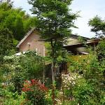 le jardin se trouve derriere le restaurant itoshima